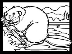 Beaver coloring - Free Animal coloring pages sheets Beaver Animal Coloring Pages, Coloring Book Pages, Coloring Pages For Kids, Adult Coloring, Beaver Drawing, Beaver Animal, Canadian Animals, Cute Baby Elephant, Molde