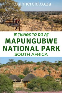 Mapungubwe National Park is on the border between South Africa, Zimbabwe and Botswana. Find out abou Kruger National Park, National Parks, Africa Destinations, Travel Destinations, Wildlife Safari, Slow Travel, Cultural Experience, Africa Travel, South Africa