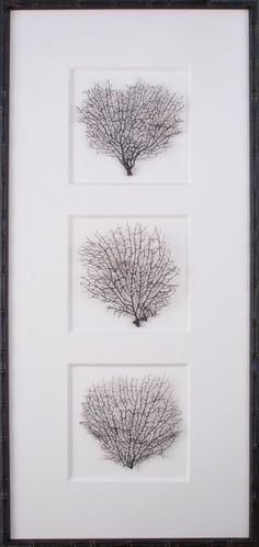 Tryptich Sea Fans - Vertical - Mirror Image Home - $419.97