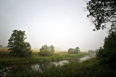 Misty morning by Eva Lind on 500px