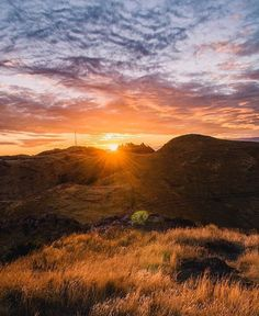 """956 Likes, 7 Comments - Christchurch & Canterbury NZ (@christchurchnz) on Instagram: """"#ChristchurchNZ sunsets ☀️ 📷 = @samphelounge 🙌"""""""