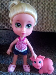 The doll and pig