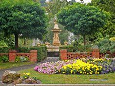 Launceston Garden, Tasmania.