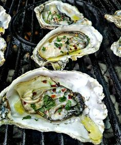 Amazing oysters on the grill. I think this is one of the best ways to do your…