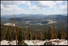 cottonwood pass pct - Bing Images