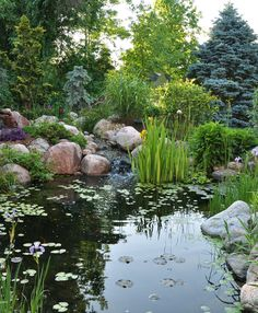 Before You Work On Your Home's Landscape, Consider Adding a Koi Pond Don't let your fear of landscaping keep you from having the best looking house on the block. Small Water Features, Water Features In The Garden, Backyard Water Feature, Ponds Backyard, Pond Landscaping, Landscaping With Rocks, Garden Pond Design, Natural Pond, Pond Plants