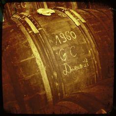 in Cognac