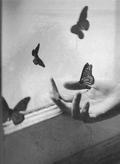 butterfly = proof that a soul ripping pain does miraculously change you into a new self with wings to fly above fields of colorful Hope.