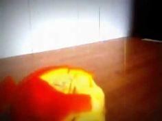 Love oranges ;P