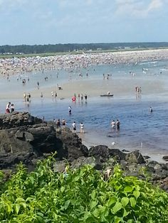 Ogunquit Beach today....very hot and very humid. Water was cold! (54) Went to York strip, did some of the stores at the outlet mall in Kittery... great day.