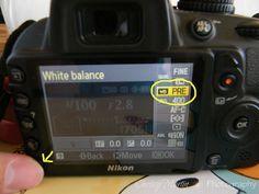 Nikon D3100: Creating A Custom White Balance   Chrissy Martin Photography