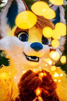 Photoshoot by Gus – Fuzzerfox Animal Costumes, Amor Animal, Furry Pics, Anthro Furry, Fur Babies, Character Design, Cute Animals, Drawing Tips, Costumes