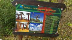 Baobab Vogelpark Marlow