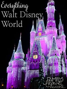 Thinking of Going to Walt Disney World? You Must Read This First to Prepare!