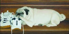 Pet Portrait Paintings by Award-winning Artist Shelley Lowell. Dog pet portrait painting: Dusty, an adorable pug, loves to rest his head on his mom's running shoes.