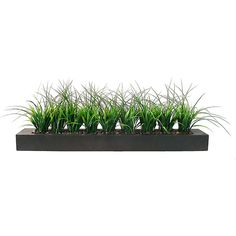 Vintage Laura Ashley Green Grass in Contemporary Wood Planter... (115 BAM) ❤ liked on Polyvore featuring home, home decor, floral decor, filler, flowers, wooden planters, flower planters, window planter, rectangular plastic container and outdoor planters