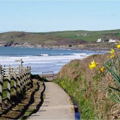 """""""The region has so much to offer the Slow traveller: cliff paths for walking, sea with rolling breakers for surfing and sandy beaches for lounging, hidden coves, and wonderful Exmoor with its heathery hills and deep valleys, combes, where rivers tumble over mossy stones on their way to the Bristol Channel."""" Slow Travel North Devon; www.bradtguides.com"""