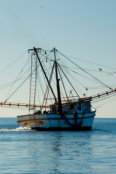 The Golden Isles are the center of Georgia's shrimping industry.  Shrimp boats can be seen most days either heading out or coming back with their catch.  www.GoldenIsles.com