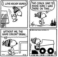 Image detail for -163-snoopy_zamboni_2.jpeg-normal