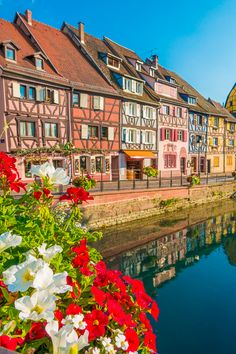 This colorful, medieval village may may be the most beautiful small town… Offers in the best selling hotels book now, cancel at no cost Luxury Hotels · Price Guarantee · Opinions· Free Hotel Nights · Last Minute Deals Types: France Photography, Travel Photography, Ireland Landscape, Beautiful Places To Travel, Europe Destinations, Travel Aesthetic, France Travel, Paris, European Travel