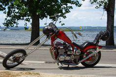 moto, sport mécanique, harley