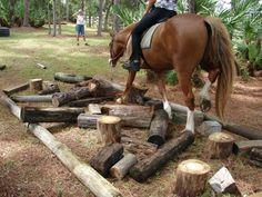 Un obstacle très simple à concevoir , pas si simple pour certains chevaux ... idéal pour apprendre aux chevaux à gérer leurs pieds et aux humains à laisser eurs chevaux gérer l'obstacle seul ! :-)