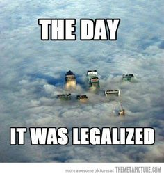 Imagine the day that marijuana is finally legalized everywhere. This funny weed meme shows you exactly what the world will look like from the sky! Weed Memes, Weed Humor, Stoner Humor, Medical Marijuana, Stoner Quotes, Weed Quotes, Funny Quotes, Funny Memes, Herbs
