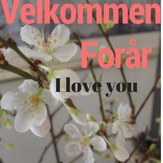 Så nåede vi alligevel igennem vinteren! #webshop #forårshumør #dethaglerogsolenskinner #velkommenforår #iloveyou #forår
