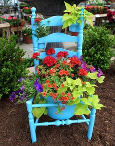 Alte Stühle im Garten mit neuer Funktion - attraktive Pflanzgefäße - #Gartengestaltung