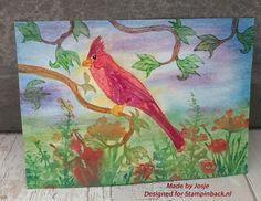 STAMPINBACK: Cardinal in pastelachtergrond