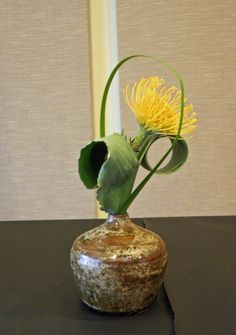 Manipulated Strelitzia Leaf, Pin Cushion Protea and Typha Leaf - KEITH STANLEY