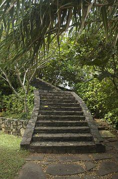 Taprobane Island by Virginia Murdoch, via Flickr