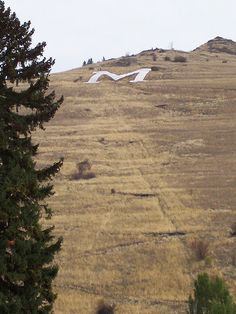 yes I have climbed up the M....Missoula Montana one of my favorite cities.