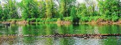 #nature #colorfull #water #real #eriepa #peninsula #lakeerie #natural #reality #clear #WiljoelArt