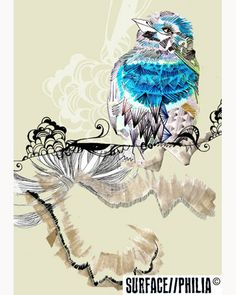 helen stevens bird illustration. I like her use of textures and lines.