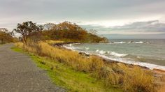 Autumn day at Hammond Bay (Nanaimo, BC) by robinb44