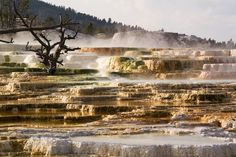 Yellowstone National Park's 6 Most Insane Natural Wonders