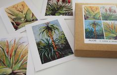 Aloe Note Cards with watercolor paintings by Karin Shelton