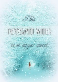 This peppermint winter is so sugar sweet... #OwlCity <3