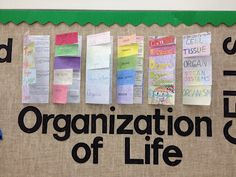Organization of Life - Cells to Organisms