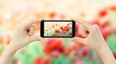 Handyfotografie – gute Bilder mit dem Fotohandy machen http://www.nationalgeographic.de/foto/fotografie-tipps/handyfotografie-gute-bilder-mit-dem-fotohandy?utm_content=bufferdd60e&utm_medium=social&utm_source=pinterest.com&utm_campaign=buffer #reisen #fotografie