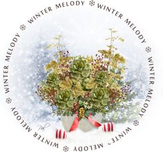 """""""Winter Melody"""" by pamlcs on Polyvore"""