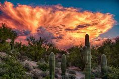 Dust storm sunset in Arizona.