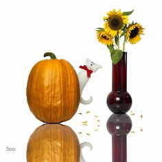 Guess who's coming. by Thomas Hufer on I See It, Candle Sconces, Still Life, Wall Lights, Pumpkin, Candles, Orange, Decor, Appliques