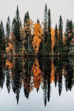 The Big Debate About Fine Art Landscape Photography – PhotoTakes Cozy Aesthetic, Autumn Aesthetic, Beautiful Landscape Photography, Autumn Photography, Destinations, Autumn Cozy, Autumn Fall, Autumn Leaves, Winter