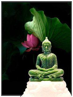 Very artful and beautiful Buddha statue Lotus Buddha, Art Buddha, Buddha Zen, Gautama Buddha, Buddha Buddhism, Buddha Peace, Chakras, Buddhist Philosophy, Mudras