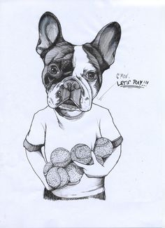 frenchie , french bulldog