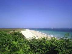 Shell Beach, Guyana