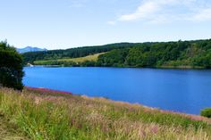 Lac de Guéry - www.auvergne.fr Nature Animals, France, River, Mountains, Outdoor, Hobbies, Travel, Outdoors, Outdoor Games