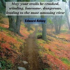 """Running Quotes: """"""""May your trails be crooked, winding, lonesome, dangerous, leading to the most amazing view.""""~Edward Abbey"""